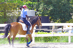 Horse-Riding for Weight Loss